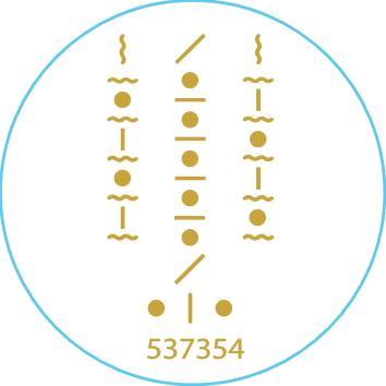 Vegane Outdoor Aufkleber: Corona Virus Schutz Zauberformel und Zahlencode